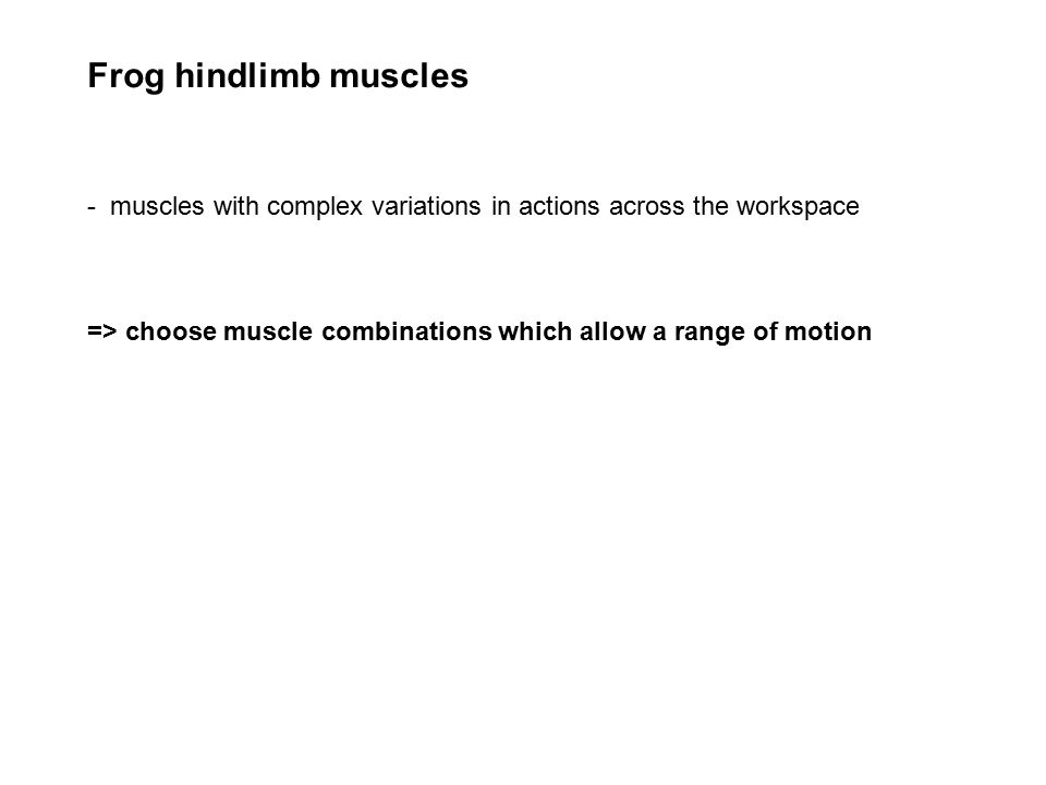 Frog hindlimb muscles - muscles with complex variations in actions across the workspace => choose muscle combinations which allow a range of motion