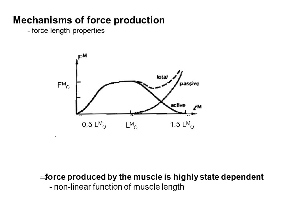 Mechanisms of force production - force length properties  force produced by the muscle is highly state dependent - non-linear function of muscle length LMOLMO 1.5 L M O 0.5 L M O FMOFMO