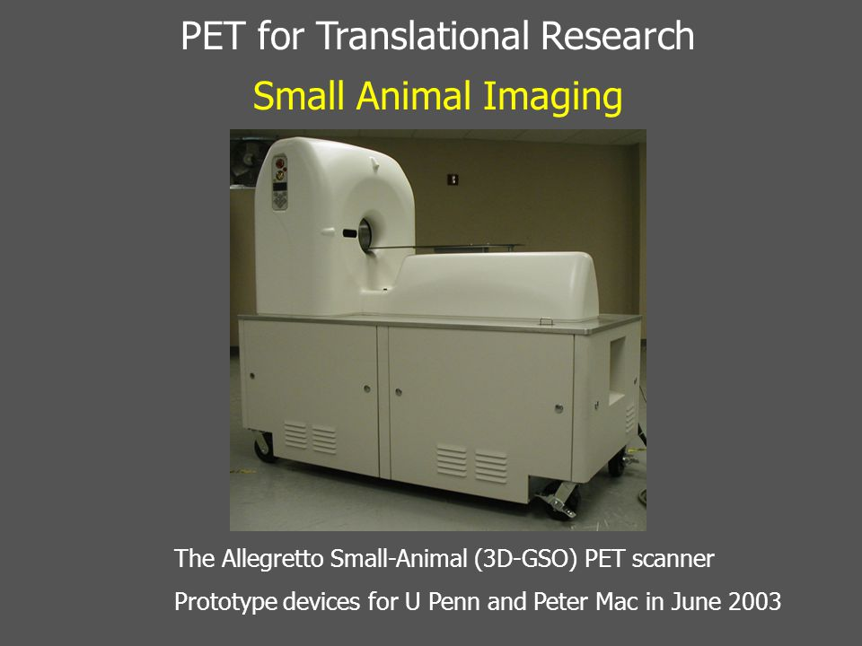 Small Animal PET Validation Studies in Mice – F-18 Fluoride 18 F fluoride PET bone scan of a mouse
