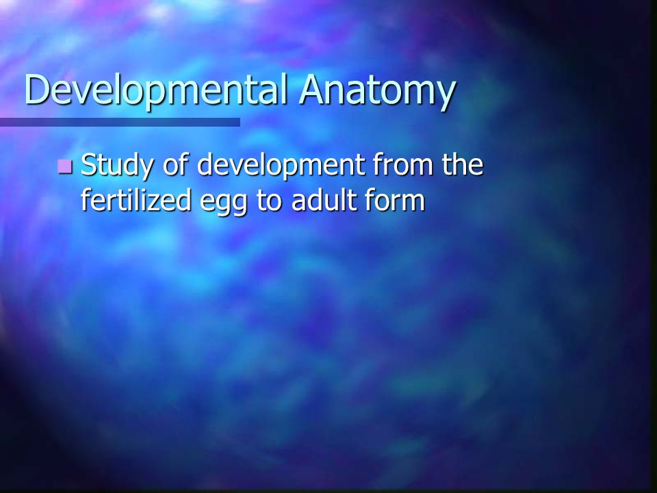 Developmental Anatomy Study of development from the fertilized egg to adult form Study of development from the fertilized egg to adult form