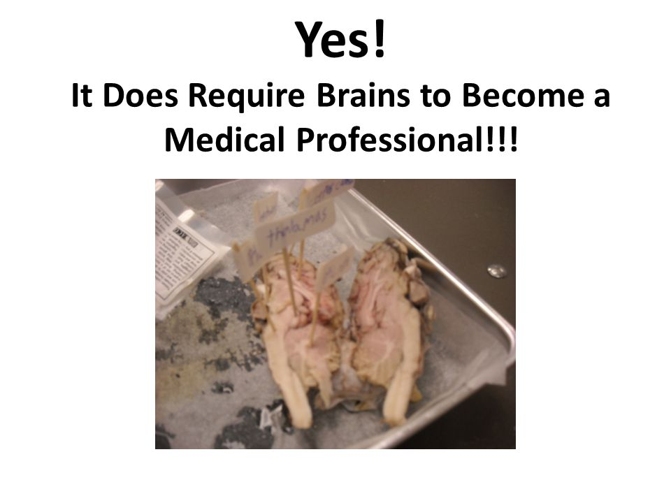 Yes! It Does Require Brains to Become a Medical Professional!!!