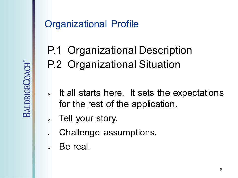 Organizational Profile P.1 Organizational Description P.2 Organizational Situation  It all starts here. It sets the expectations for the rest of the