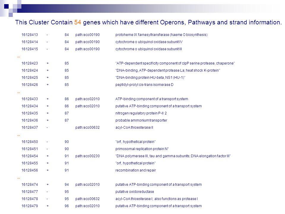 16128413 -84 path:eco00190 protoheme IX farnesyltransferase (haeme O biosynthesis) 16128414 -84 path:eco00190 cytochrome o ubiquinol oxidase subunit IV 16128415 -84 path:eco00190 cytochrome o ubiquinol oxidase subunit III...