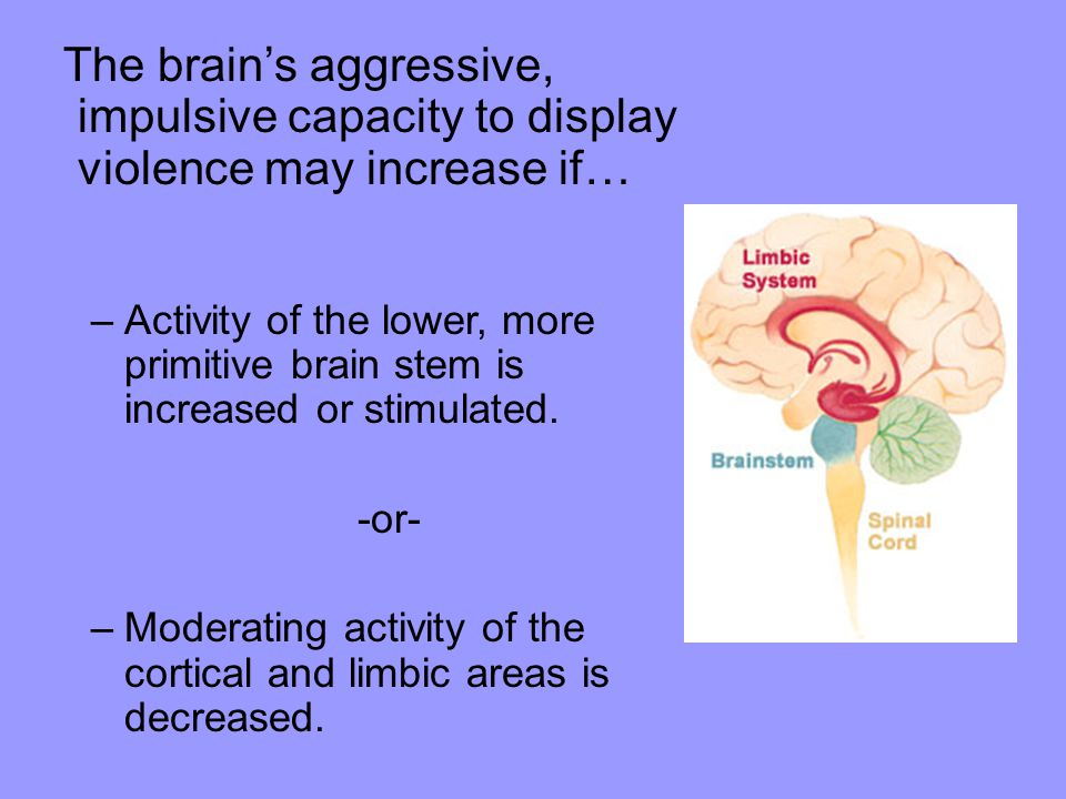 The brain's aggressive, impulsive capacity to display violence may increase if… –Activity of the lower, more primitive brain stem is increased or stimulated.