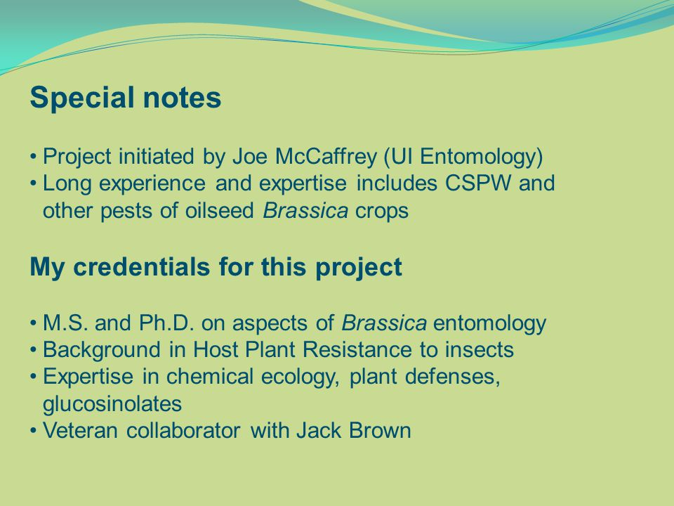 Special notes Project initiated by Joe McCaffrey (UI Entomology) Long experience and expertise includes CSPW and other pests of oilseed Brassica crops My credentials for this project M.S.