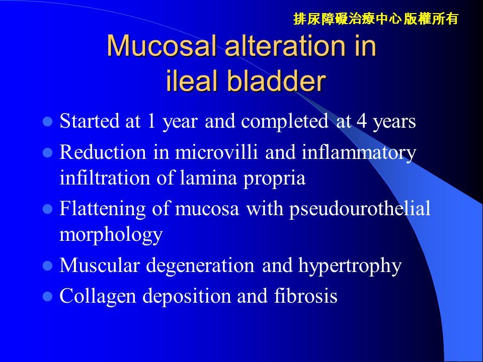 排尿障礙治療中心 版權所有 Ileal mucosa in enterocystoplasty