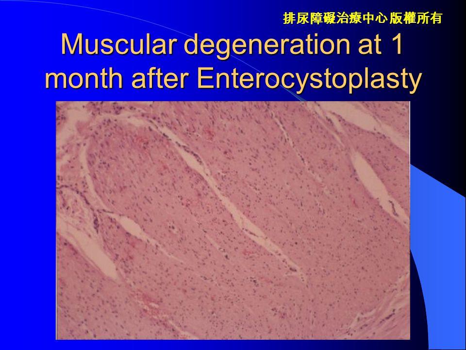 排尿障礙治療中心 版權所有 Active peristalsis at initial stage of enterocystoplasty