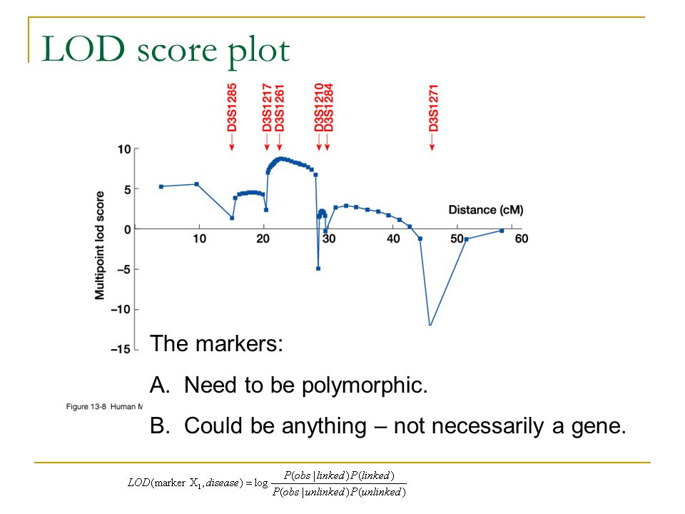 LOD score plot The markers: A.Need to be polymorphic. B.Could be anything – not necessarily a gene.