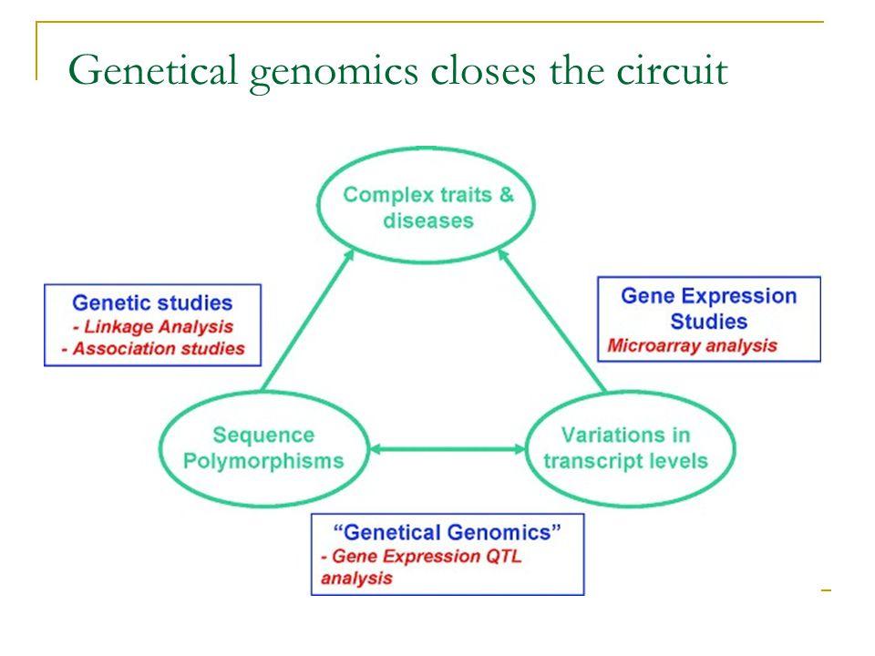Genetical genomics closes the circuit