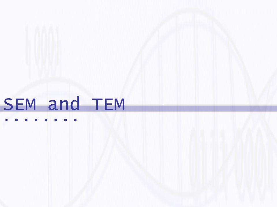 SEM and TEM