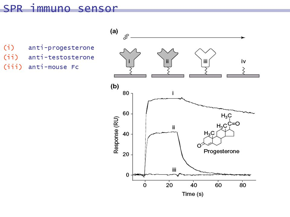 (i) anti-progesterone (ii)anti-testosterone (iii)anti-mouse Fc SPR immuno sensor