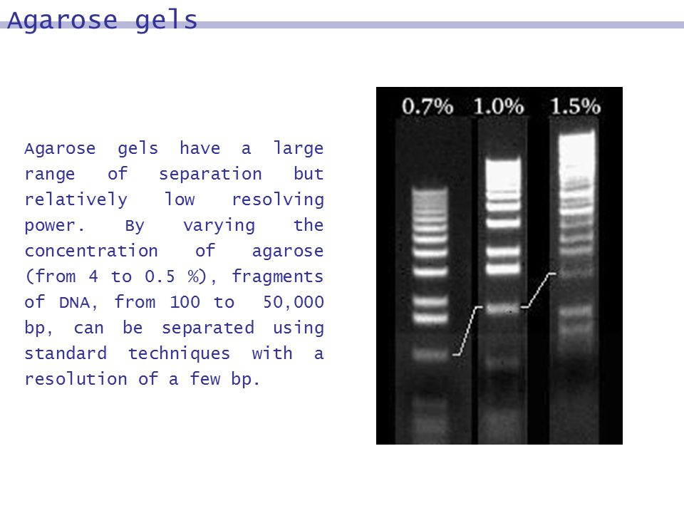 Agarose gels have a large range of separation but relatively low resolving power.