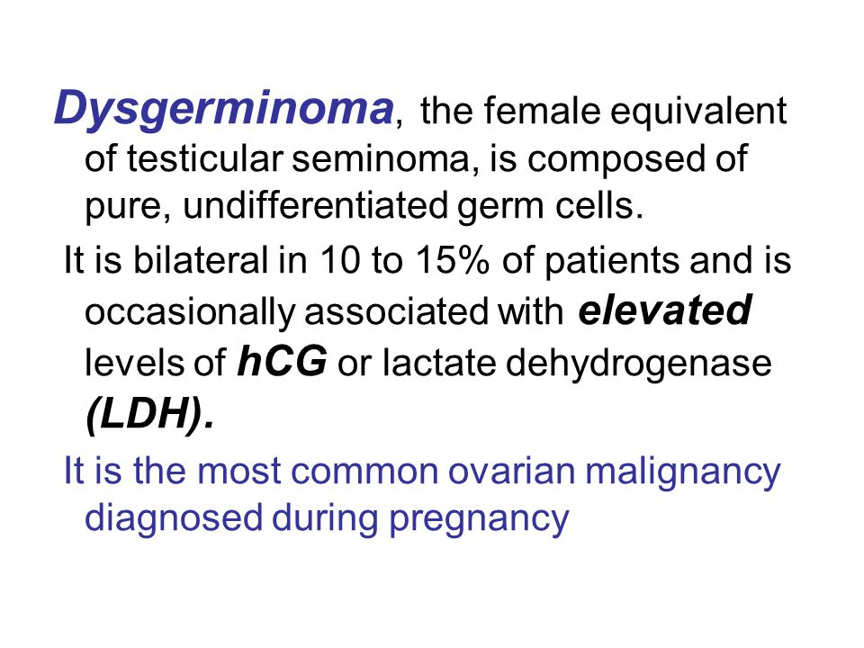 Dysgerminoma, the female equivalent of testicular seminoma, is composed of pure, undifferentiated germ cells. It is bilateral in 10 to 15% of patients