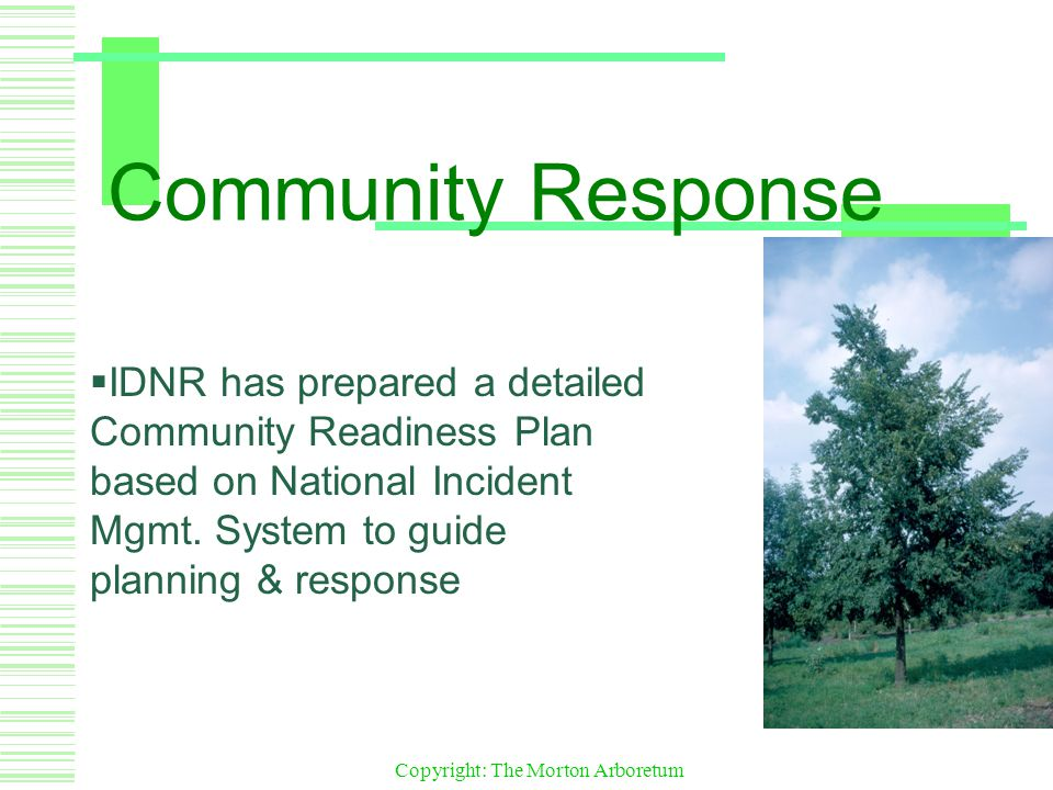 Copyright: The Morton Arboretum Community Response  IDNR has prepared a detailed Community Readiness Plan based on National Incident Mgmt.