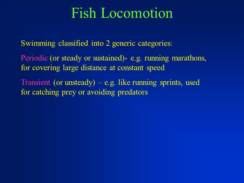 Fish Locomotion Swimming classified into 2 generic categories: Periodic (or steady or sustained)- e.g. running marathons, for covering large distance