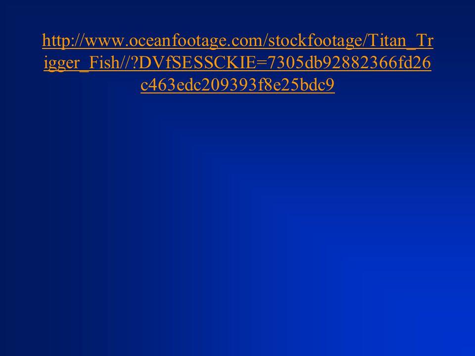 http://www.oceanfootage.com/stockfootage/Titan_Tr igger_Fish//?DVfSESSCKIE=7305db92882366fd26 c463edc209393f8e25bdc9