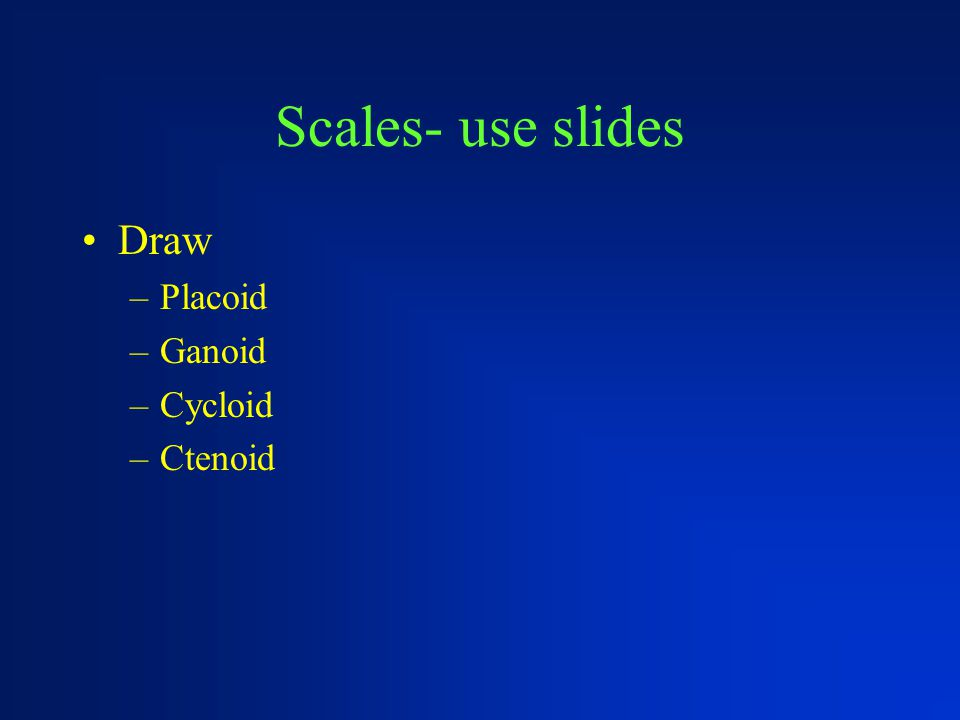 Scales- use slides Draw –Placoid –Ganoid –Cycloid –Ctenoid