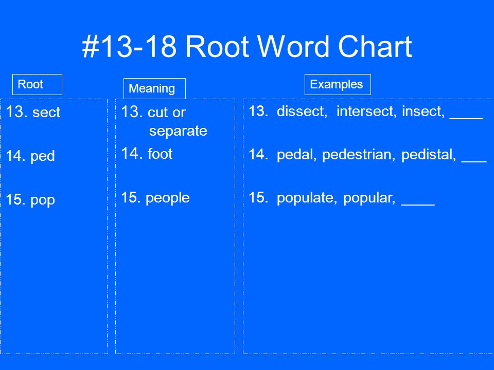 #13-18 Root Word Chart 13. sect 14. ped 15. pop 13.