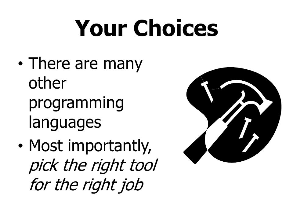 Your Choices There are many other programming languages Most importantly, pick the right tool for the right job