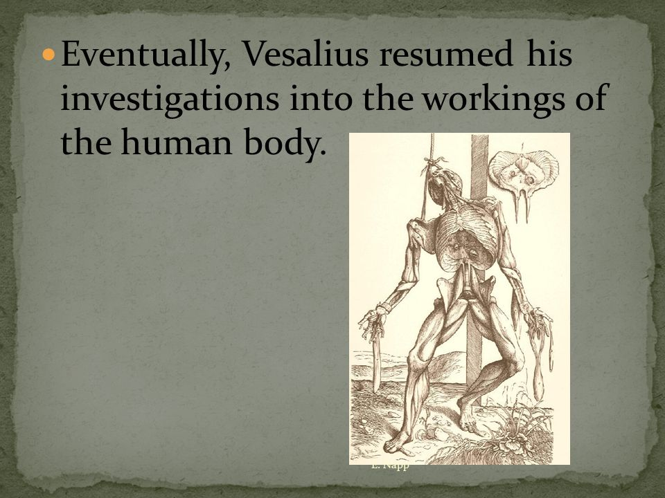 Eventually, Vesalius resumed his investigations into the workings of the human body. E. Napp