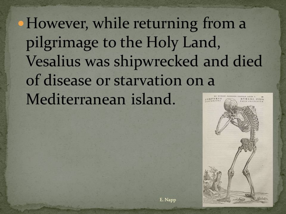 However, while returning from a pilgrimage to the Holy Land, Vesalius was shipwrecked and died of disease or starvation on a Mediterranean island.
