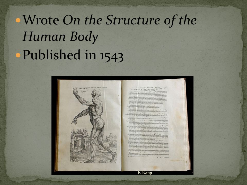This 700-page book, with more than 300 illustrations, established the foundations of the modern science of anatomy.