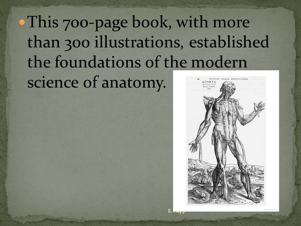 It contained Vesalius' firsthand observations of the structure and operation of the human body.