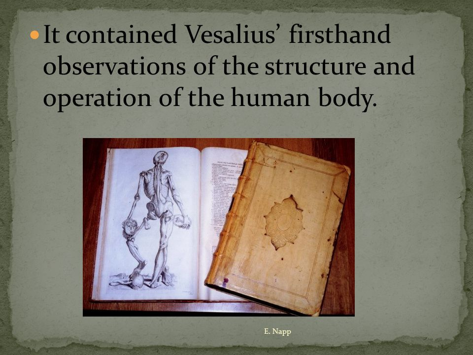The application of the scientific method would not have been possible had not Vesalius dared to dissect human bodies.