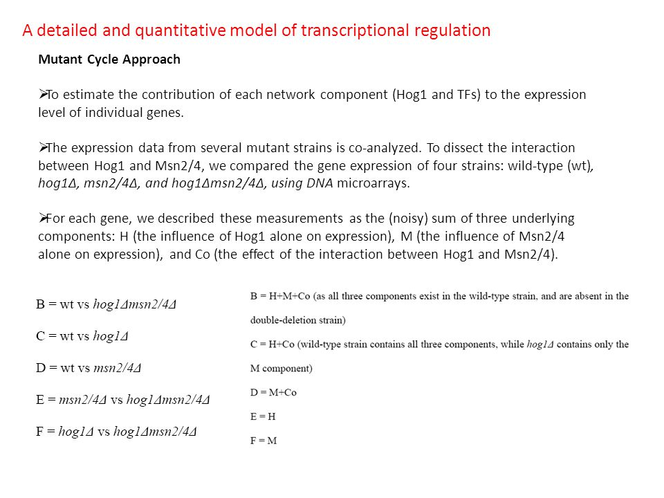 A detailed and quantitative model of transcriptional regulation Mutant Cycle Approach  To estimate the contribution of each network component (Hog1 and TFs) to the expression level of individual genes.