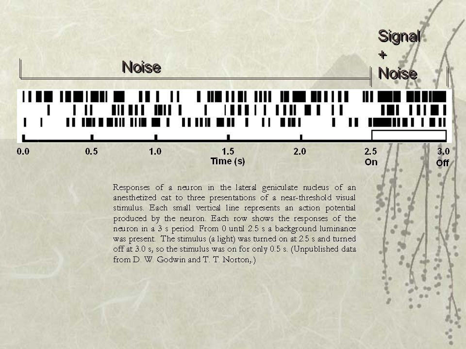 Noise Signal + Noise