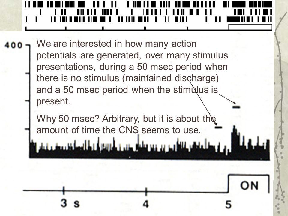 We are interested in how many action potentials are generated, over many stimulus presentations, during a 50 msec period when there is no stimulus (maintained discharge) and a 50 msec period when the stimulus is present.