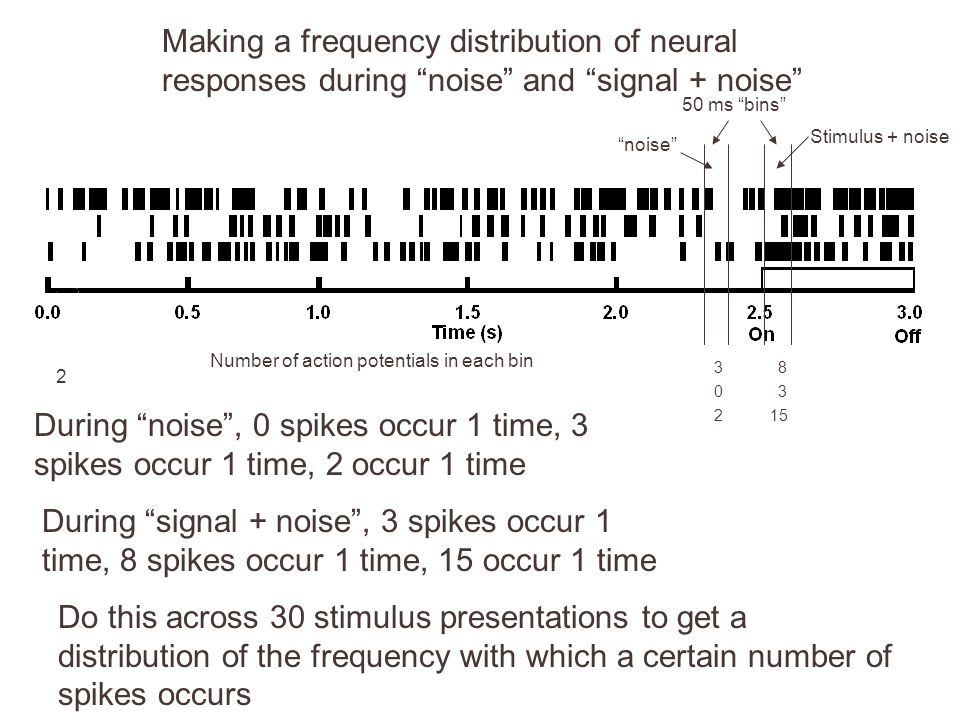 2 83 03 215 Making a frequency distribution of neural responses during noise and signal + noise 50 ms bins Number of action potentials in each bin noise Stimulus + noise During noise , 0 spikes occur 1 time, 3 spikes occur 1 time, 2 occur 1 time During signal + noise , 3 spikes occur 1 time, 8 spikes occur 1 time, 15 occur 1 time Do this across 30 stimulus presentations to get a distribution of the frequency with which a certain number of spikes occurs