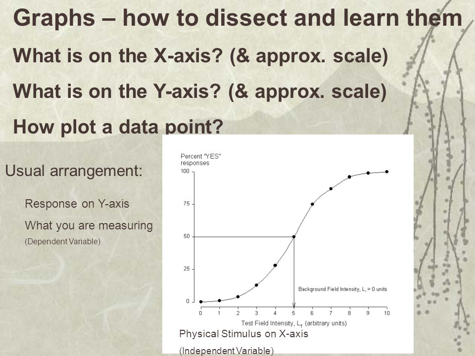 Graphs – how to dissect and learn them What is on the X-axis.