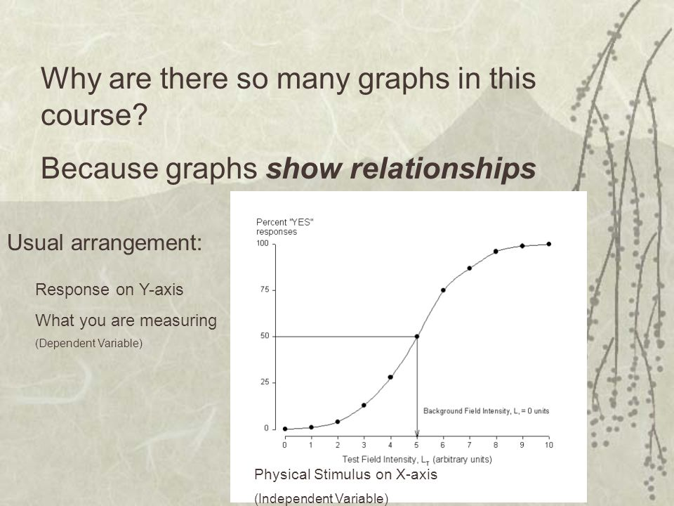 Why are there so many graphs in this course.