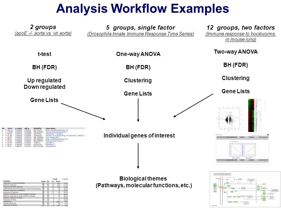 Analysis Workflow Examples 2 groups (apoE -/- aorta vs.