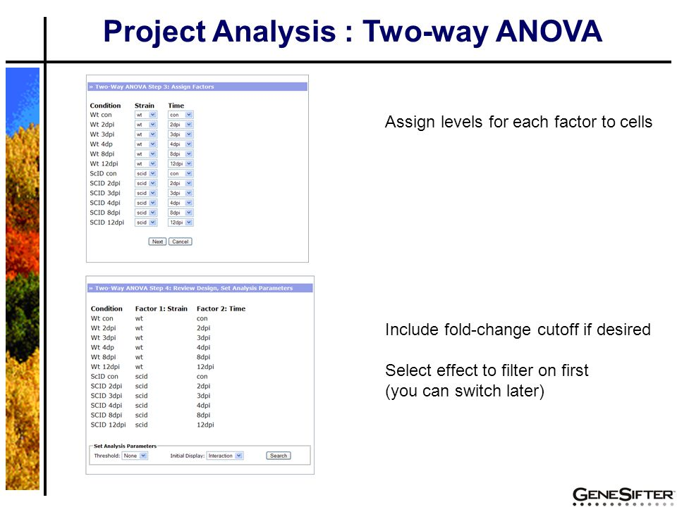 Project Analysis : Two-way ANOVA Assign levels for each factor to cells Include fold-change cutoff if desired Select effect to filter on first (you ca
