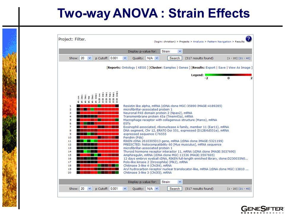 Two-way ANOVA : Strain Effects
