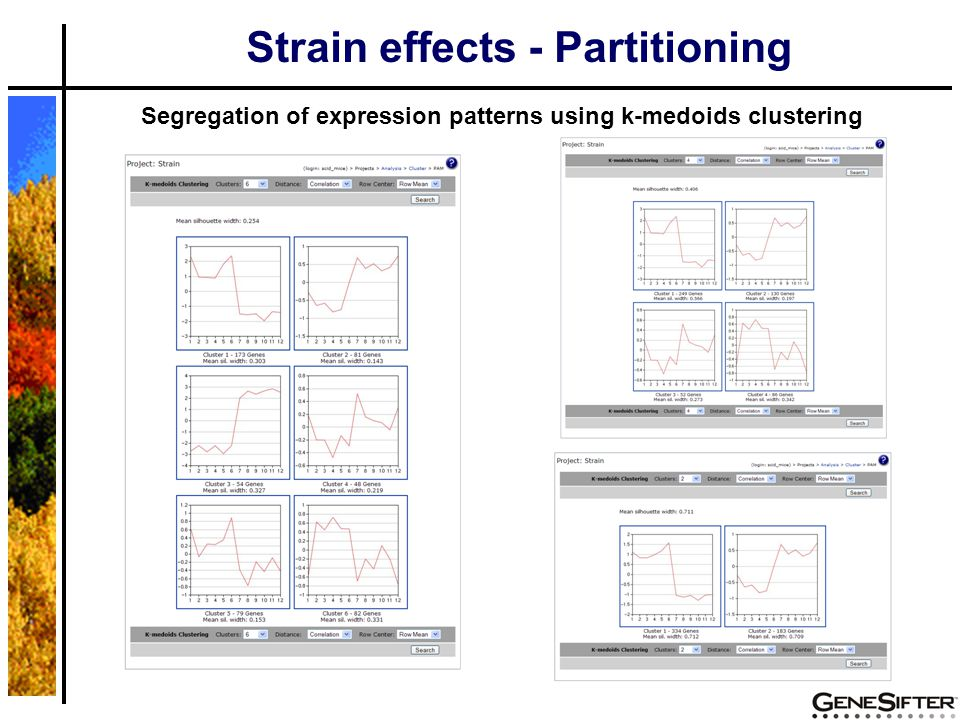Segregation of expression patterns using k-medoids clustering Strain effects - Partitioning