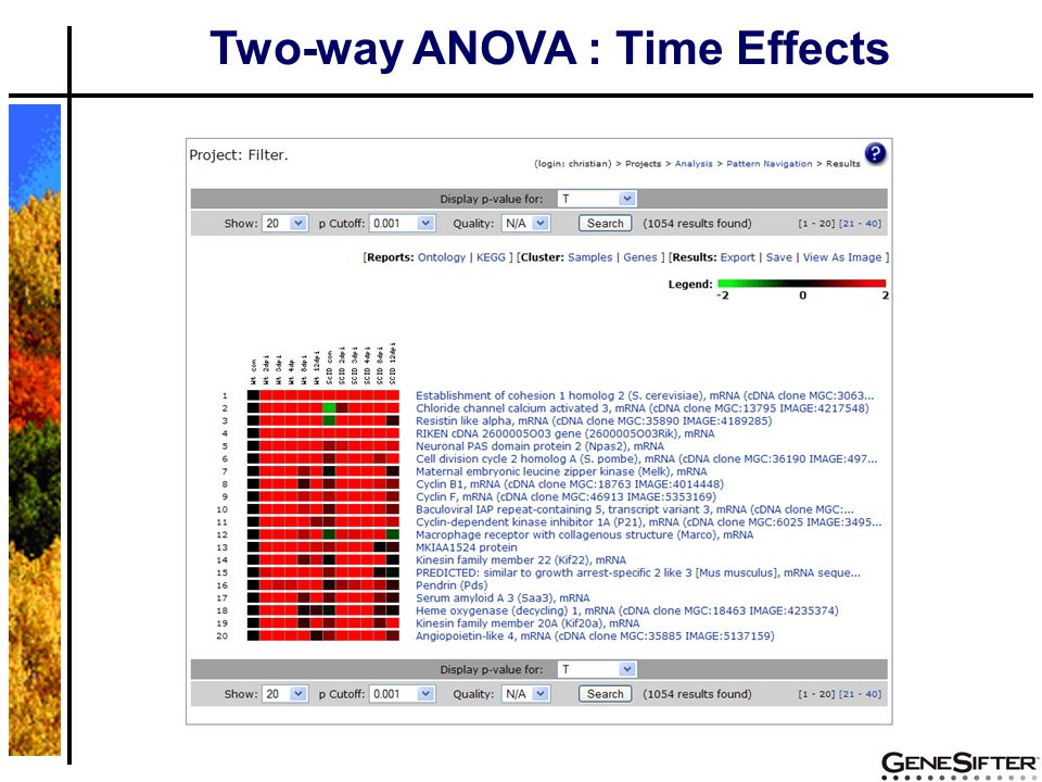 Two-way ANOVA : Time Effects