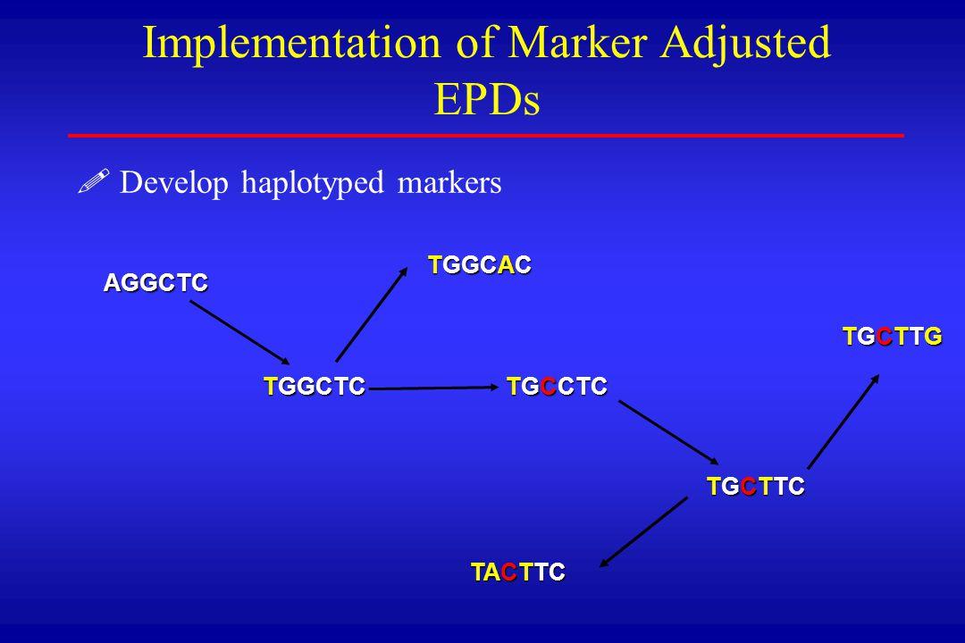 ! !Develop haplotyped markers Implementation of Marker Adjusted EPDs AGGCTC14% TGGCTC 25% TGCCTC 17% TGCTTC 1% TGGCAC 10% TACTTC 12% TGCTTG 21% Functional alleles 1)AGCTC, TGCAC, TGCTC 2)TGCTC, TGTTC, TGTTG, TATTC