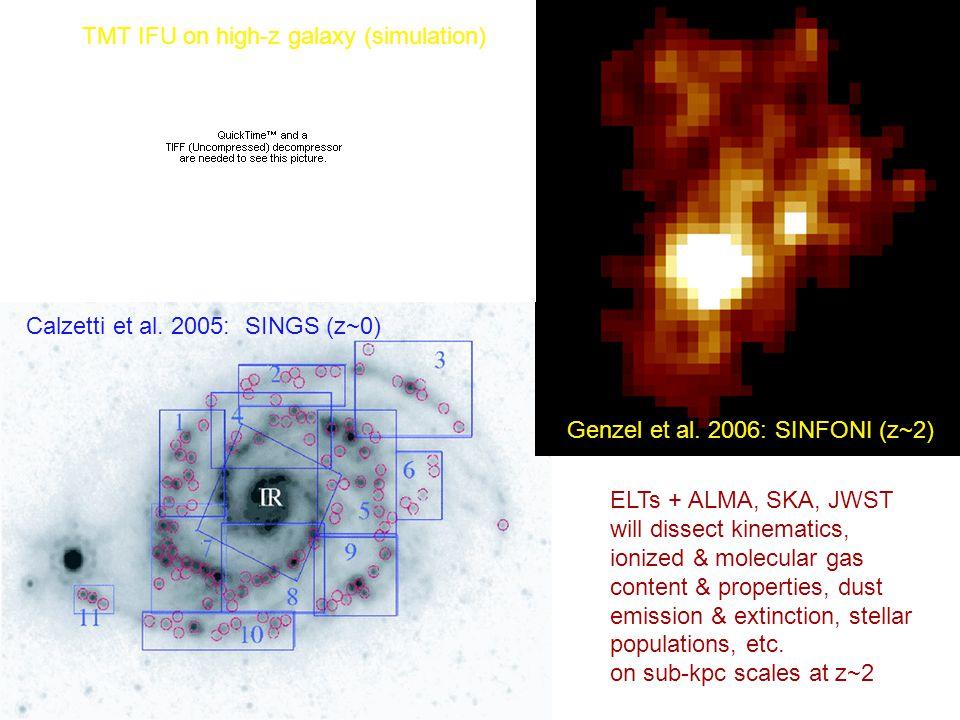 17 January 2008M. Dickinson - GSMT Workshop Calzetti et al. 2005: SINGS (z~0) Genzel et al. 2006: SINFONI (z~2) ELTs + ALMA, SKA, JWST will dissect ki