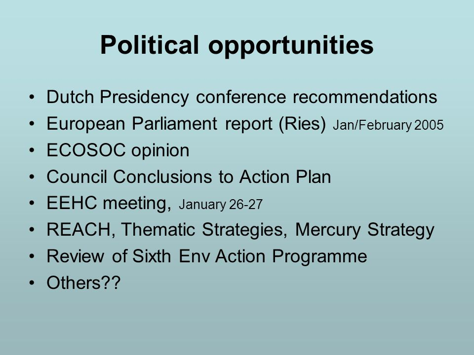 Political opportunities Dutch Presidency conference recommendations European Parliament report (Ries) Jan/February 2005 ECOSOC opinion Council Conclusions to Action Plan EEHC meeting, January 26-27 REACH, Thematic Strategies, Mercury Strategy Review of Sixth Env Action Programme Others??