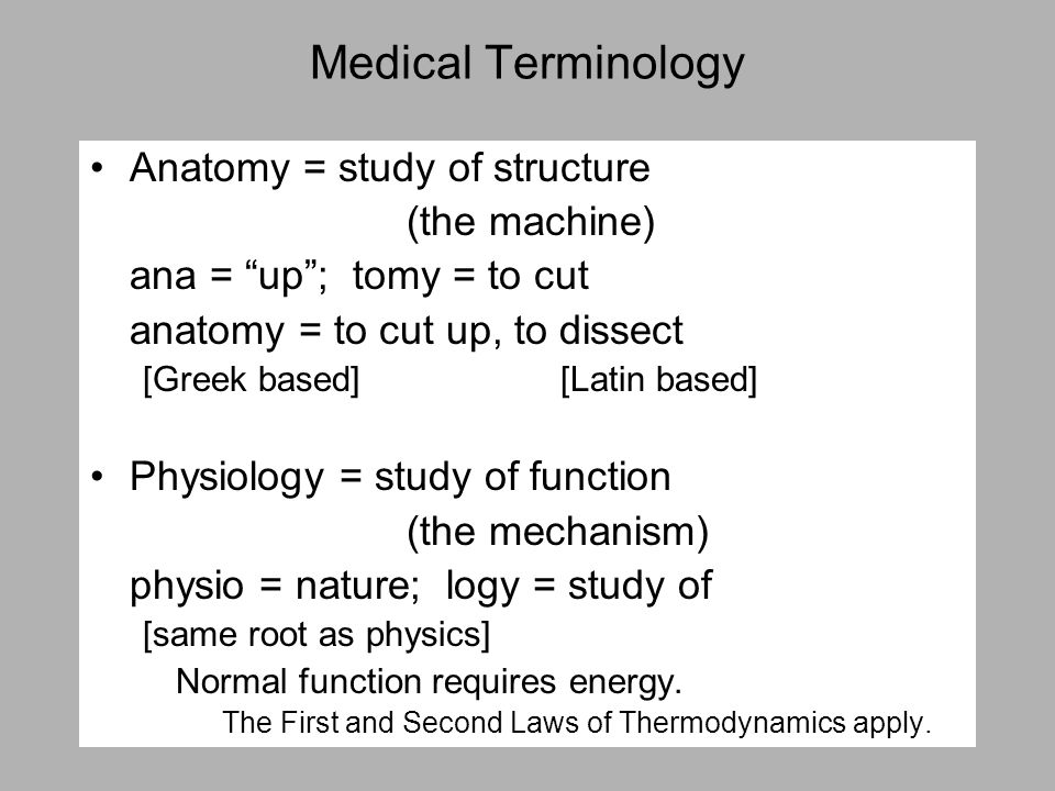 Medical Terminology Anatomy = study of structure (the machine) ana = up ; tomy = to cut anatomy = to cut up, to dissect [Greek based] [Latin based] Physiology = study of function (the mechanism) physio = nature; logy = study of [same root as physics] Normal function requires energy.