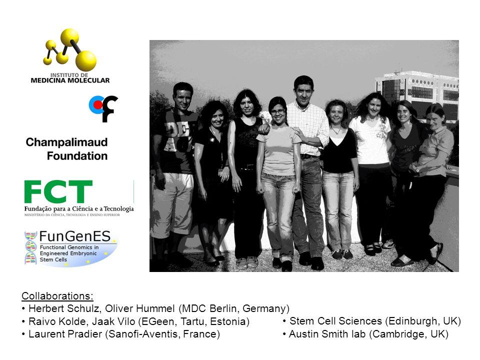 Collaborations: Herbert Schulz, Oliver Hummel (MDC Berlin, Germany) Raivo Kolde, Jaak Vilo (EGeen, Tartu, Estonia) Laurent Pradier (Sanofi-Aventis, France) Stem Cell Sciences (Edinburgh, UK) Austin Smith lab (Cambridge, UK)