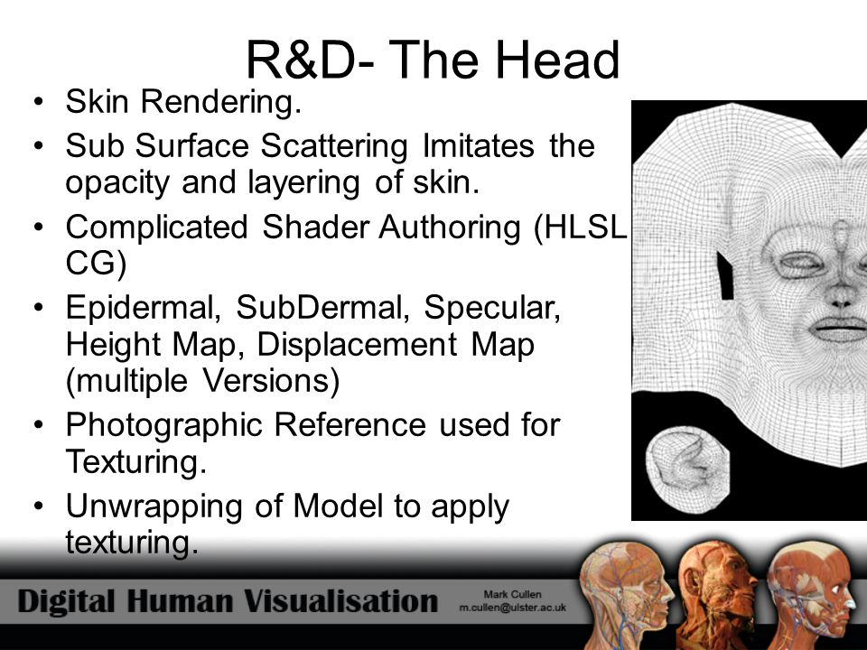 R&D- The Head Skin Rendering. Sub Surface Scattering Imitates the opacity and layering of skin. Complicated Shader Authoring (HLSL, CG) Epidermal, Sub