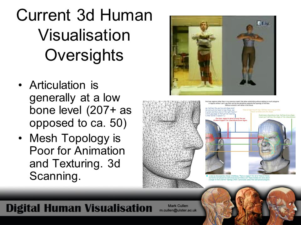 Current 3d Human Visualisation Oversights Articulation is generally at a low bone level (207+ as opposed to ca. 50) Mesh Topology is Poor for Animatio