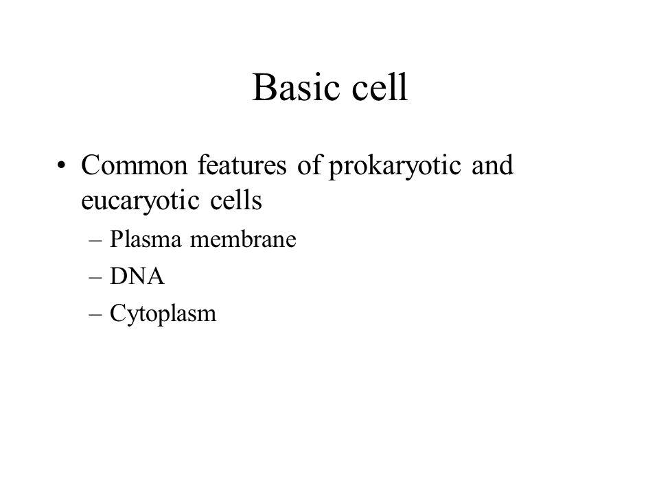 Prokaryotes Pro - before & karyote - nucleus –no nucleus plasma membrane cell wall capsule flagella pili