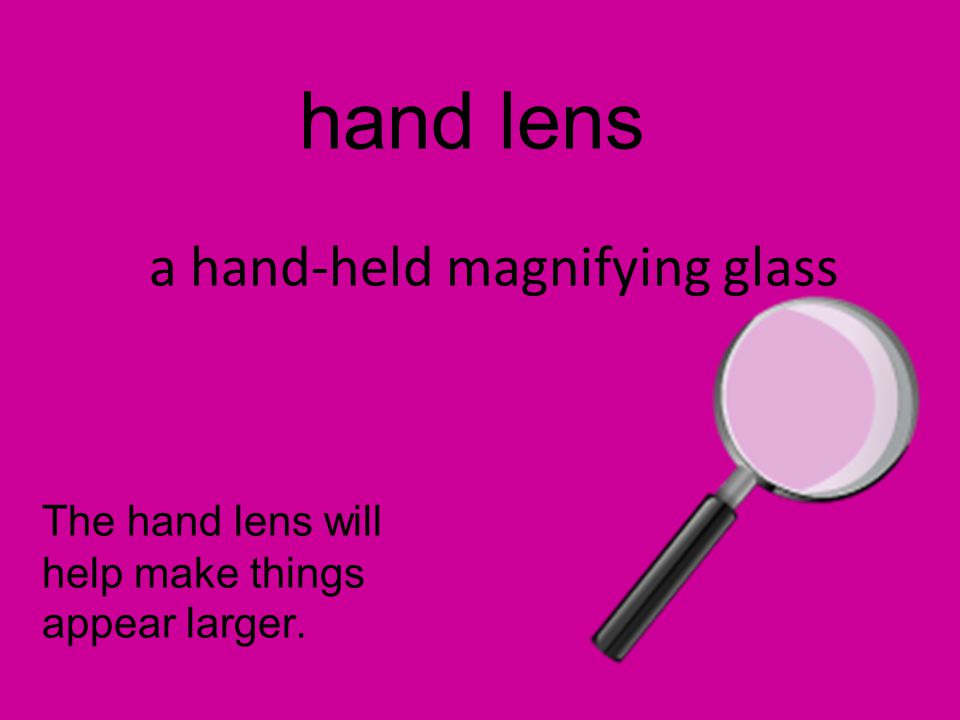 hand lens a hand-held magnifying glass The hand lens will help make things appear larger.