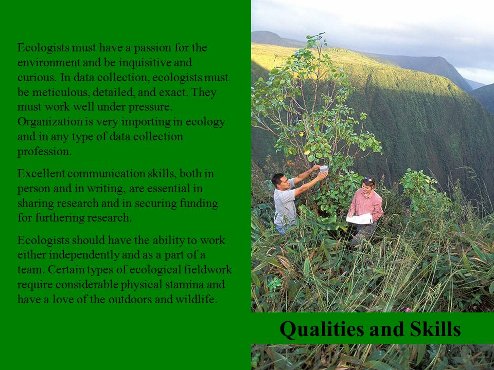 Qualities and Skills Ecologists must have a passion for the environment and be inquisitive and curious. In data collection, ecologists must be meticul