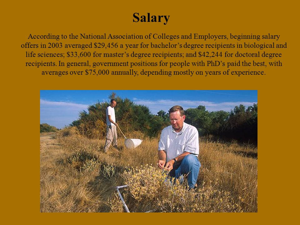 Salary According to the National Association of Colleges and Employers, beginning salary offers in 2003 averaged $29,456 a year for bachelor's degree recipients in biological and life sciences; $33,600 for master's degree recipients; and $42,244 for doctoral degree recipients.